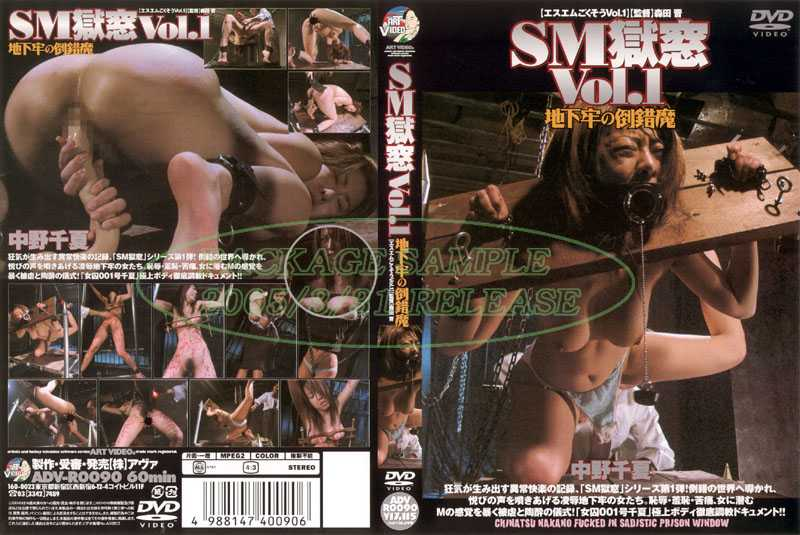 ADV-R0090 Perversion Of Magic Dungeon SM Prison Window Vol.1 –  Art Video
