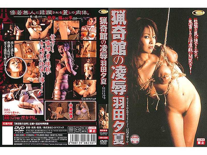 DD-230 Yuka Haneda Bizarre Humiliation Of The Museum –  Collect
