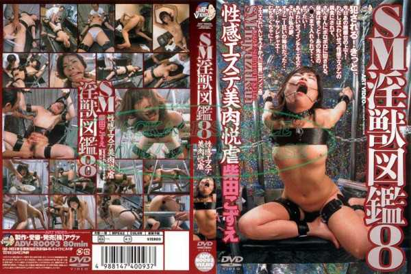 ADV-R0093 Yue Meat Esthetic Beauty Sadistic Erogenous SM Slutty Animal Book 8 –  Art Video