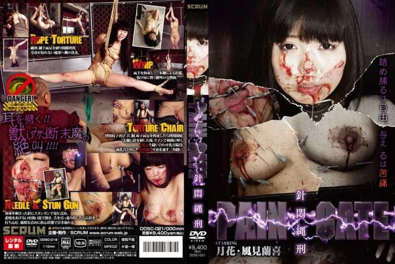 DDSC-021 PAIN GATE 針悶縄刑 PAIN GATE
