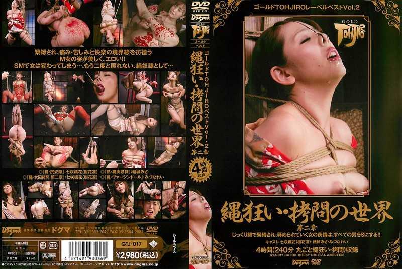 GTJ-017 ゴールドTOHJIROレーベル・ベスト Vol.2 Gold TOHJIRO Label / ゴールドTOHJIROレーベル
