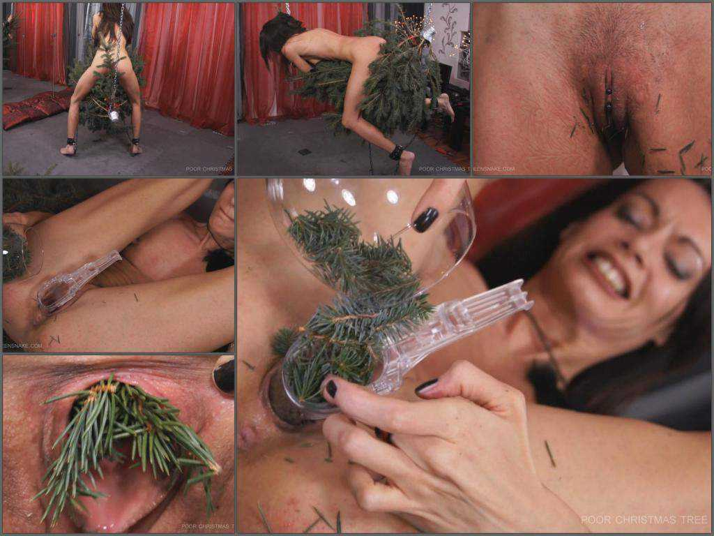 Pussy insertion – Christmas-tree needles in pussy and bloody spanking (must see)