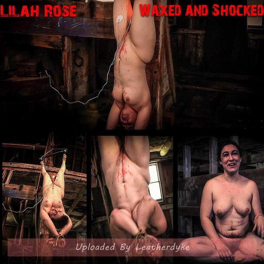 Lilah Rose's Waxed and Shocked (and ejaculated) (Release date: May 1, 2020)