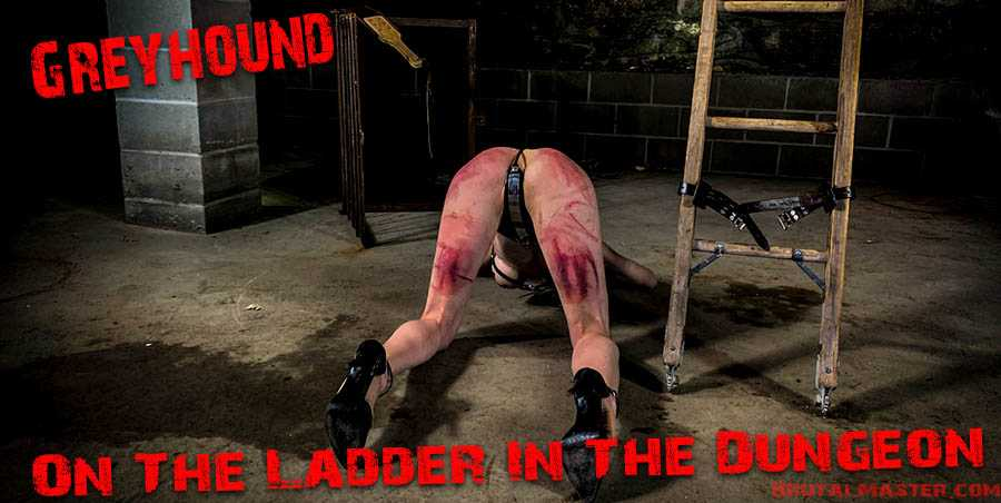 Greyhound – On The Ladder In The Dungeon | Full HD 1080p | Nov 30, 2019