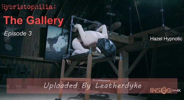 Hybristophilia: The Gallery episode 3 with Hazel Hypnotic