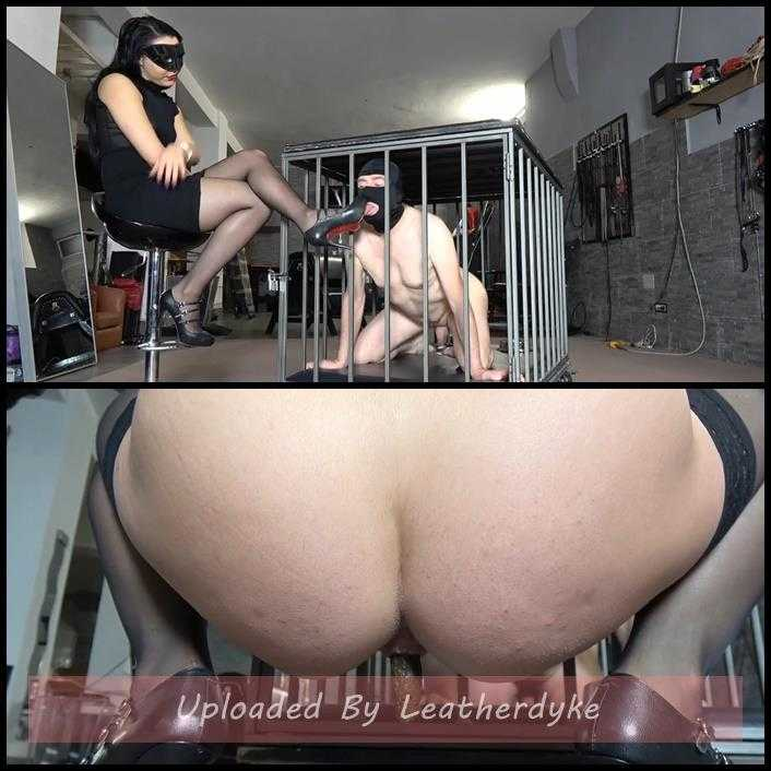 TRAINING MY NEW TOILET SLAVE Pt2 with MISTRESS GAIA | Full HD 1080p | December 14, 2017