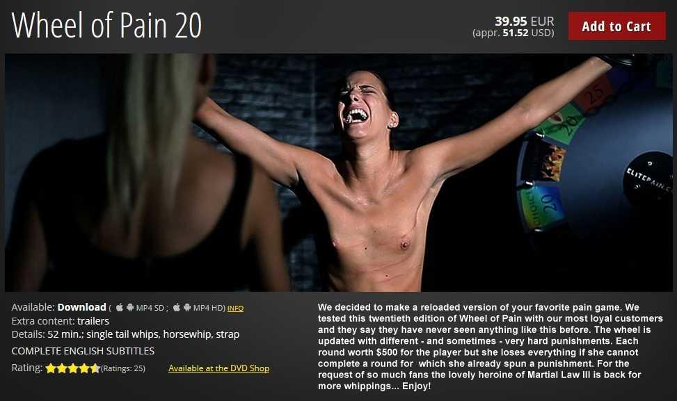 Wheel of Pain 20
