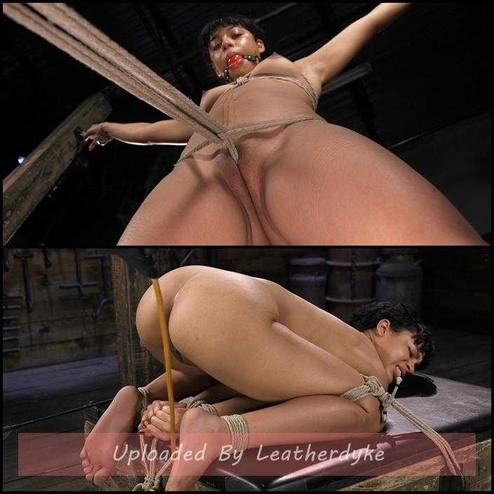 Exotic Newbie Gets Tied and Tormented at the Hands of The Pope | HD 720p | May 24, 2018